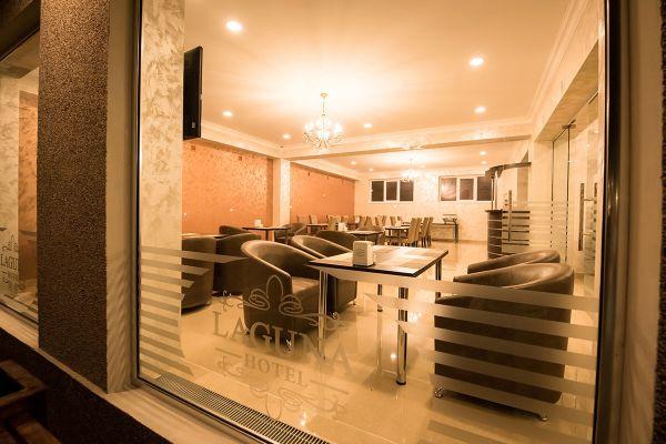 hotel-laguna-0230DB8710B-4C8D-DDEC-0DDF-12089176144B.jpg